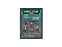 ELDAR GUARDIANS (PUSH FIT)